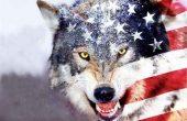 استکبار آمریکا صهیونیسم اسرائیل سازش مقاومت مذاکره آزادی جبهه مقاومت